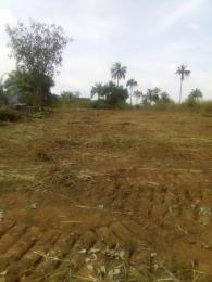 Mixed   Use Land Land for sale Amansea by Unizik Awka Anambra state  Anambra Anambra