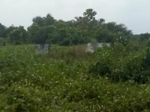Land for sale Isawo Owutu Road, Agric Ikorodu Lagos