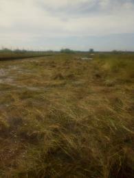 Residential Land Land for sale TRANSCENDENCE ESTATE, BEHIND SHOPRITE, OFF CARDINAL ANTHONY OLABUMMI ROAD Sangotedo Ajah Lagos