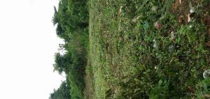 Land for sale Benin City, Oredo, Edo Oredo Edo