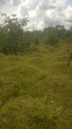 Residential Land Land for sale Agu Awka Awka South Anambra