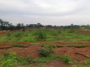 Mixed   Use Land Land for sale Ibagwa Nike behind the catholic church Enugu Enugu