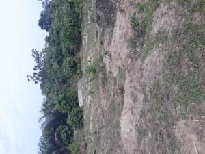 Land for sale Sangotedo Sangotedo Ajah Lagos