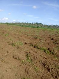 Residential Land Land for sale Mowo Badagry close to Buhari Estate and Badagry megaport,Lagos Age Mowo Badagry Lagos