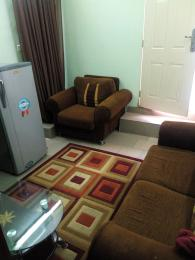 1 bedroom mini flat  Mini flat Flat / Apartment for rent Yakubu Gowon crescent Asokoro Abuja Asokoro Abuja