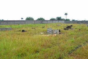 Commercial Land Land for sale OKUN IMEDU, IBEJU-LEKKI Few Minutes From La campaign Tropicana Beach resort. LaCampaigne Tropicana Ibeju-Lekki Lagos
