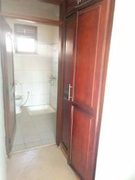1 bedroom mini flat  Flat / Apartment for rent dopemu  orile agege Agege Lagos - 0