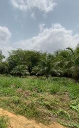 Mixed   Use Land Land for sale Alabata Abeokuta Ogun