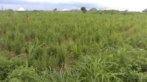 Commercial Land Land for sale Off Eastern bypass kaduna Kaduna South Kaduna