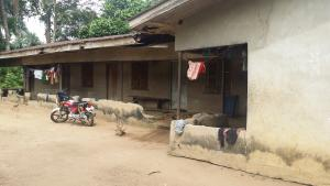 Land for sale Okoroagu Etche Rivers
