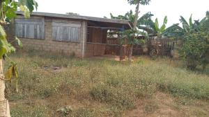 Commercial Property for sale dalute Odo ona Ibadan Oyo