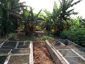 Land for sale Mosinmi sagamu Sagamu Ogun