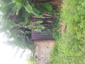 Mixed   Use Land Land for sale -  Ibeshe Ikorodu Lagos