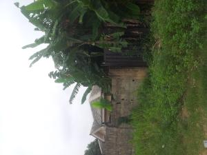 Mixed   Use Land Land for sale -  Ibeshe Ikorodu Lagos