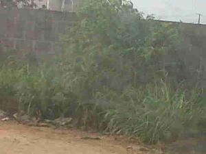 Mixed   Use Land Land for sale Ajao Estate Isolo. Lagos Mainland  Ajao Estate Isolo Lagos