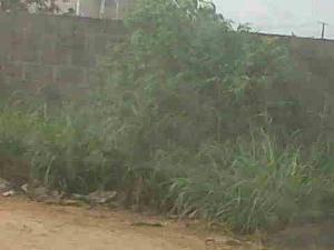 Land for sale Idimu Ejigbo Estate. Lagos Mainland Ejigbo Ejigbo Lagos