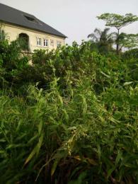 Land for sale Idimu  Ejigbo Ejigbo Lagos