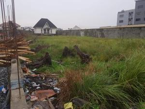 Commercial Land Land for rent Lekki Phase 1 Lekki Phase 1 Lekki Lagos