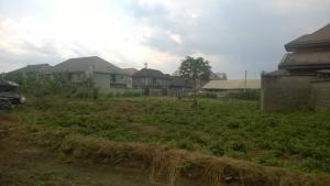Residential Land Land for sale Paradise Estate Obia-Akpor Port Harcourt Rivers