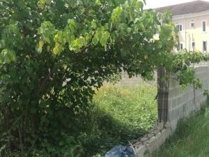 Residential Land Land for sale Peninsula Garden Estate, Sangotedo Ajah Lagos