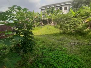 Residential Land Land for sale 15 Akani Street Eagle Island Port-Harcourt  Eagle Island rumueme/Oroakwo Port Harcourt Rivers