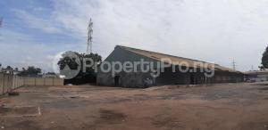 1 bedroom mini flat  Warehouse Commercial Property for rent Adeniyi Jones Ikeja Lagos