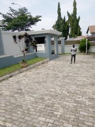 5 bedroom Detached Duplex House for rent T.y danguma at asokoro Asokoro Abuja