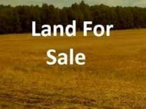 Mixed   Use Land Land for sale Orchid Road ,Lafiaji Ikota Lekki Lagos