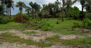 Residential Land Land for sale Okun Ajah, Abraham Adesanya Road,Lagos Abraham adesanya estate Ajah Lagos