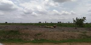 Serviced Residential Land Land for sale Direct opposite Sunnvale estate junction Lokogoma  Lokogoma Abuja