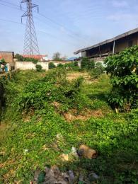 Residential Land Land for sale Alexander estate new Oko oba Abule Egba Lagos