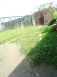 Residential Land Land for rent Oladelola estate Ikosi-Ketu Kosofe/Ikosi Lagos