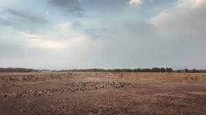 Residential Land Land for sale DIAMOND ESTATE, AJAH LAGOS Sangotedo Ajah Lagos