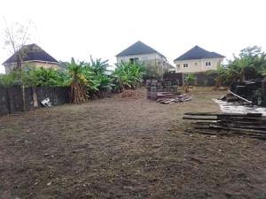 Residential Land Land for sale onyebuchi street, off grandmate road, ago palace way okota, Ago palace Okota Lagos