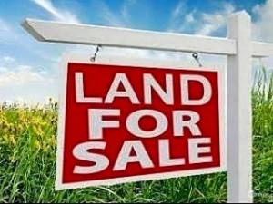 Mixed   Use Land Land for sale Abule Ado Bus stop - Amuwo Odofin Amuwo Odofin Amuwo Odofin Lagos