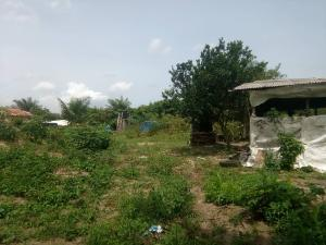 Residential Land Land for sale Last bustop.  Ago palace Okota Lagos