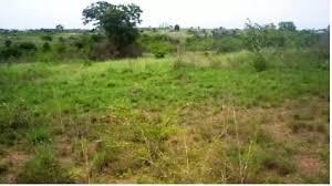 Mixed   Use Land Land for sale . Iganmu Orile Lagos