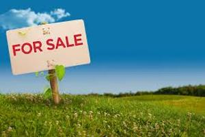 Mixed   Use Land Land for sale Off Otunba street  Unity estate Ojodu Lagos