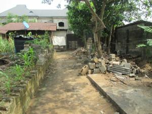 Land for sale Chinda-Nu-Odu Ada George Port Harcourt Rivers - 0