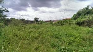 Land for sale Oke alo estate, gbagada Millenuim/UPS Gbagada Lagos