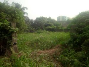 Residential Land Land for sale By Ogudu Playing Ground, Along Ojota-Ogudu Part of 3rd Mainland Bridge Ogudu GRA Ogudu Lagos