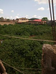 Residential Land Land for sale Grand mate Ago palace Okota Lagos