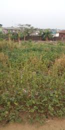 Residential Land Land for sale Edun aboru , Iyana Ipaja Ipaja Lagos