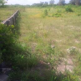 Land for sale terra anex sangotedo ajah Sangotedo Lagos