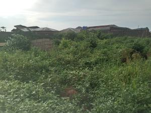 Land for sale Amule Ipaja Lagos
