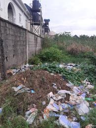 Mixed   Use Land Land for sale Remlek Estate Badore Ajah  Badore Ajah Lagos