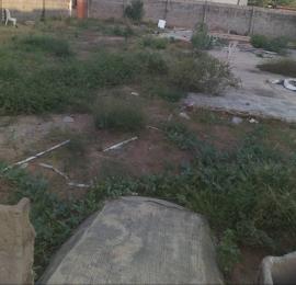 Residential Land Land for sale Afolabi close, behind iba LGA, Lasu Sheri expressway igando Igando Ikotun/Igando Lagos
