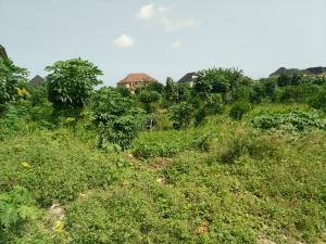 Land for sale Lasu Igando Road Igando Ikotun/Igando Lagos