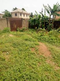 Land for sale Agric rd. Igando Ikotun/Igando Lagos