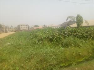 Residential Land Land for sale Greenfield Estate  Ago palace Okota Lagos
